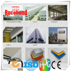 Advertising Billboard of Aluminum Composite Panel (RCB130521) pictures & photos