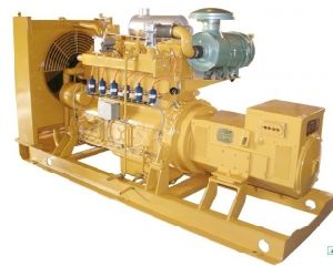Good Quality Natural Gas Generator pictures & photos