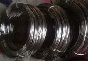 Top Supplier Top Stainless Steel Wire pictures & photos