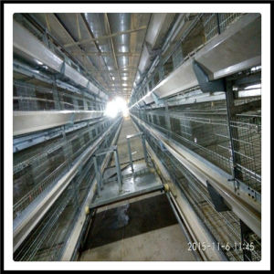 High Quality and Full Automatic Layer Battery Cage pictures & photos
