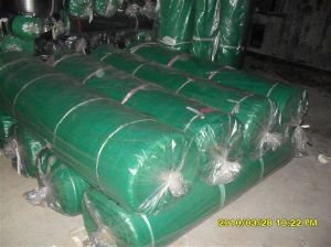 Agricultural Used Sunshade Netting/Shade Netting pictures & photos
