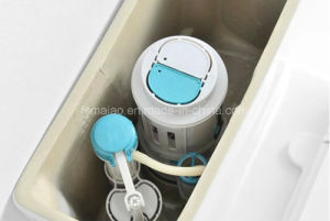 China Watermark S-Trap 150/220mm Washdown Back to Wall Two Piece Toilet (6014) pictures & photos