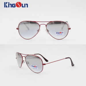 Classic Metal Sunglasses with Wire Temple Ks1093 pictures & photos