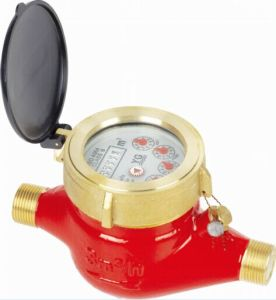 Hot Water Brass Water Meter (LXSG-15E-50E) pictures & photos