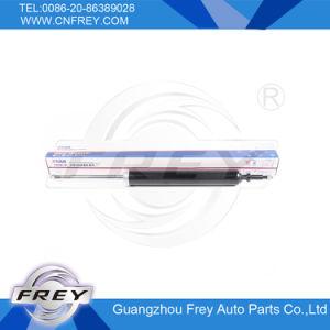 Rear Shock Absorber for E87 E81 E90 E91 E92 E93 OEM No. 33526772926 pictures & photos