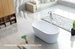 Fashion Design Normal Acrylic Freestanding Bathtub (LT-2S) pictures & photos