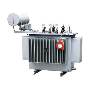 S9 Series Distribution Transformer pictures & photos