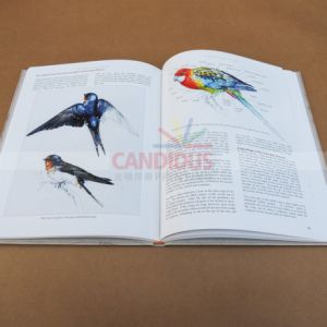 High Quality Book Printing Hardcover Book Paperback Book Printing pictures & photos