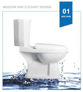 Weidansi Ceramic Wash Down S-Trap Two Pieces Toilet (WDS-T6204) pictures & photos