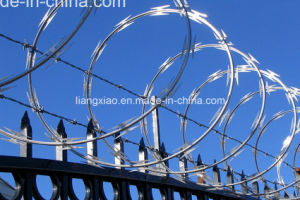 Hot-DIP Galvanized Concertina Razor Barbed Wire (HPZS6008) pictures & photos