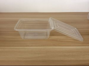 Disposable Plastic Food Container with Lids for Food Storage pictures & photos