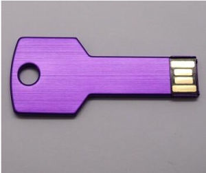Various Color Custom Logo Metal Key Shape USB for Different Capacity pictures & photos