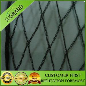 Garden Plastic Warp Knitted Bird Mist Nets pictures & photos