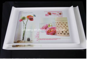 Heat Transfer Film for Plate pictures & photos