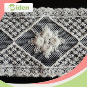 Professional QC Team Net Embroidery Lace for Wedding Invitations pictures & photos
