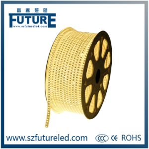Future 3W/M SMD5050 DC12V Flexible LED Strip pictures & photos