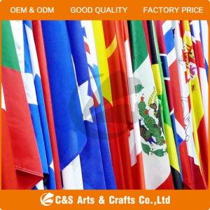 Custom National Flag, Car Flag, Hand Flag, Garden Flag, Beach Flag pictures & photos