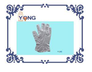 Blue Color Vinyl Examination Gloves