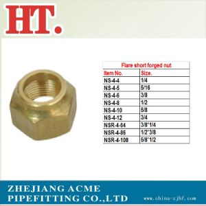 Flare Short Forged Nut pictures & photos