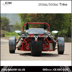 250cc Motor Engine Ztr Trike Roadster Tricycle Vehicles pictures & photos