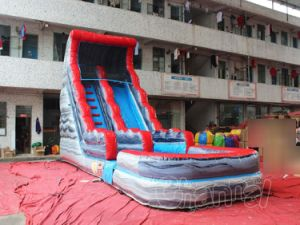 Giant Inflatable Water Slide with Pool (CHSL511L-GRAY) pictures & photos