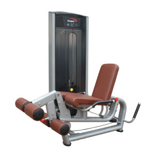 Fitness Equipment/Gym Equipment/Leg Extension &Prone Curl Combo (SA13-A) pictures & photos