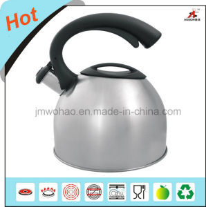 3.0L Stainless Steel Tea Kettle (FH-023)