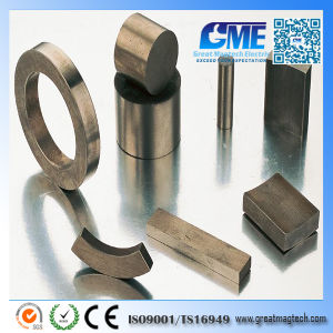 All Kinds of SmCo Magnet for Motor pictures & photos