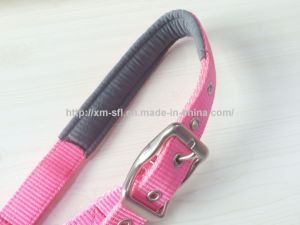 PP Webbing Halter with Hardware pictures & photos