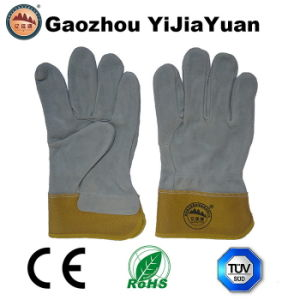 Cut Resistant Hand Working Gloves pictures & photos
