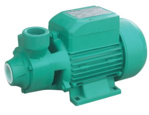 0.5HP/1HP Qb Series Small Electric Clean Water Pump for Irrigation pictures & photos
