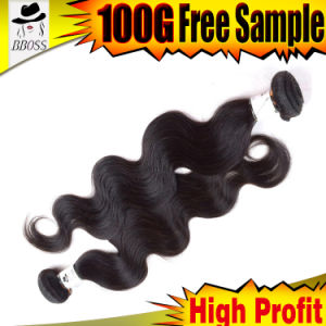 Natural Two Tone Brazilian Hair Extension pictures & photos