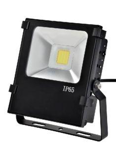 COB LED Floodlight 30W with Black Shell