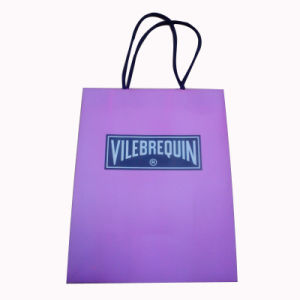 Packaging Paper Bag for Shopping with Handle and Logo (SW105) pictures & photos