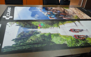 Full Color Printing Indoor PVC Rollup Banner Poster Bike Advertising pictures & photos