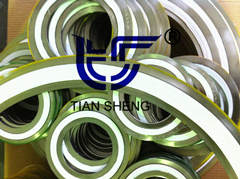 PTFE Spiral Wound Gasket pictures & photos
