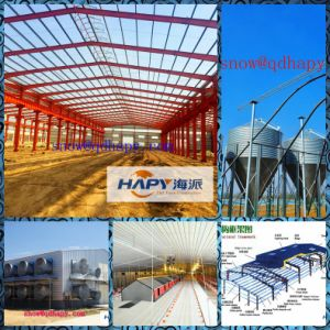 Steel Structure with Machines in Poultry House pictures & photos