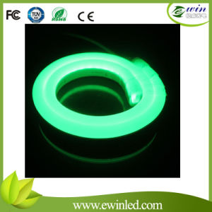 Regular LED Neon Flexible pictures & photos