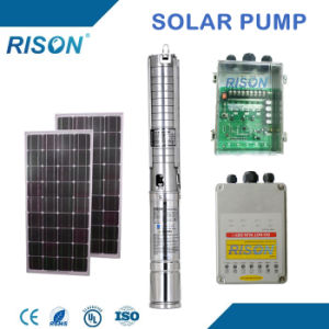 New DC Solar Water Pump (1.3kw - 6.5m3/hr - 100m) pictures & photos