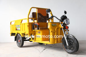 Chinese New Electric Cargo Rickshaw pictures & photos