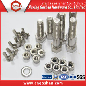 Stainless Steel 304 316 Hex Head Bolt and Nut pictures & photos