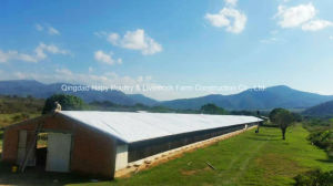 Customized Farm Construction in Poultry House with Professional Automatic Equipment pictures & photos