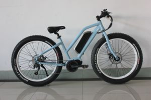 250W 36V MID Motor Fat Tyre Electric Bike with Lithium Battery with En15194 Certification pictures & photos