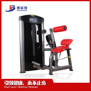 Back Extension Training Equipment/ Gyms (BFT-3017) pictures & photos