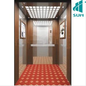 Passenger Elevator for Luxury pictures & photos