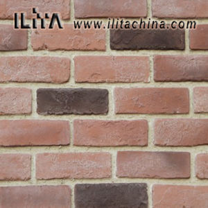 Brick Stone: Popular Stone for Building Decoration (YLD-10029)