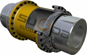High Transmission Efficiency Giiclz Gear Coupling pictures & photos