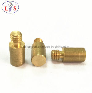 Fastener/ Customized Screw/Special Screw /Screw pictures & photos