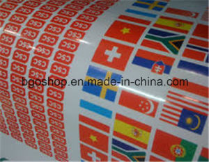 PP Film Vinyl Front Printing Pet Film pictures & photos