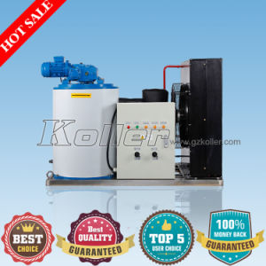 Hot Sales1ton/Day Flake Ice Machine with Ice Storage Bin pictures & photos